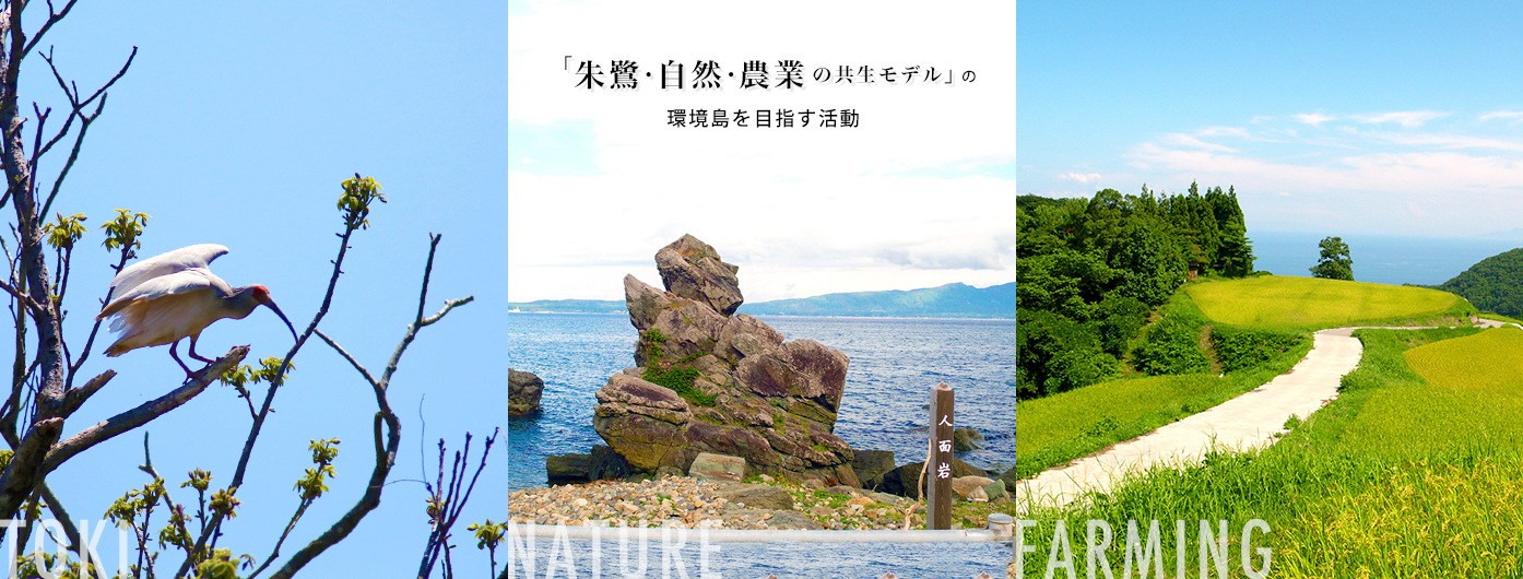 朱鷺・自然・農業の共生モデルの環境島を目指す